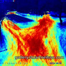 Stuart Neilson - 2b9 Odessa City Park (motion heat-map)
